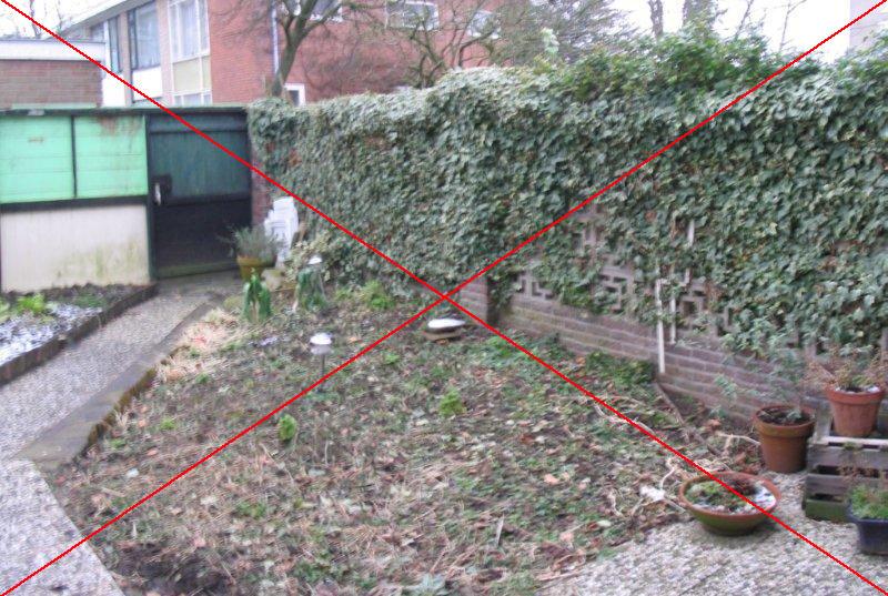 Renovatie Smalle Tuin : Foto s van voor en na de aanleg of renovatie van de tuin