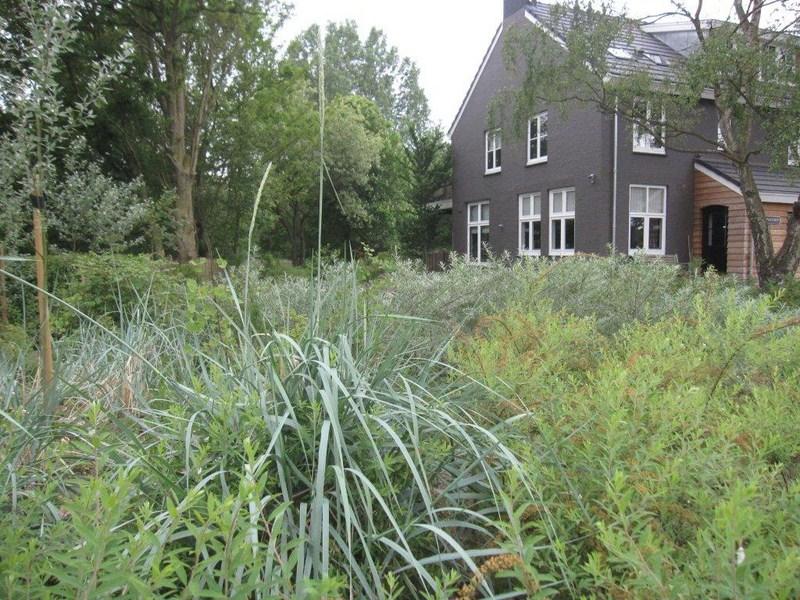 best huis met tuin in de duinen tussen wassenaar en den